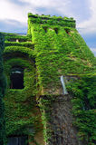 Green Tower Old Castle. Green High Tower Old Castle Stock Photo