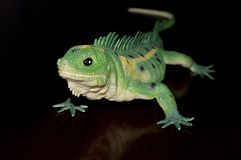 Green toy lizard royalty free stock images