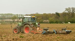 Green tractor in field cultivating soil Stock Images