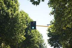 Green Traffic Light. Traffic light with green signal in Florence, Italy Stock Photos