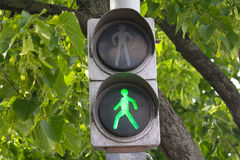 Green traffic signal hanging on wood background Royalty Free Stock Image