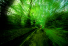 Green Trail Blur. Trial blur on an old roman road in England Royalty Free Stock Photo