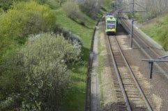 Green tram on the rails. Poznan, Poland - April: Green tram on the rails royalty free stock image