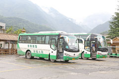 Green travel bus Stock Images