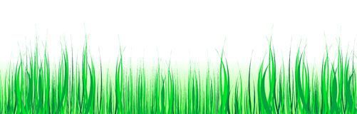 green trawy Ilustracja Wektor
