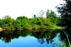 Green trea and blue Lake somvere in Jelgava. In the middle of summer Stock Photography