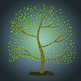 Green Tree Stock Images