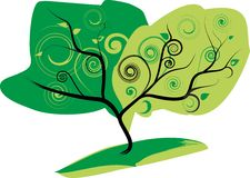 Green tree. Spring tree with green leaves illustration Stock Photo