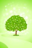 Green Tree. Abstract Green Tree Background with Flowers and Path Royalty Free Stock Image