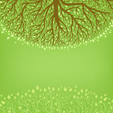 Green tree. Green background with tree and leaves Stock Images