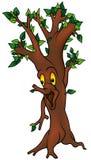 Green Tree Royalty Free Stock Photo