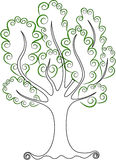 Green tree. Nice tree with green leaves Stock Image
