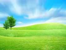 Green tree. Abstract scene green tree on meadow under blue sparkling sky Stock Photos