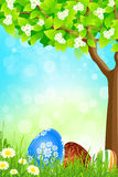 Green Tree Background with Easter Eggs Royalty Free Stock Photos