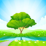 Green tree background Royalty Free Stock Image
