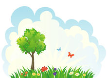 Green tree background. Illustration of a beautiful summer landscape background Royalty Free Stock Images