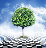 Green tree, blue sky with clouds and checkerboard floor. Optical illusion Royalty Free Stock Photo