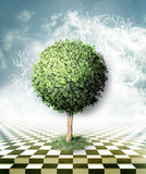 Green tree, blue sky with clouds and checkerboard floor. Optical illusion Stock Photos