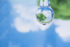 Green tree and blue sky reflected in  the water drop Royalty Free Stock Photos