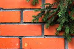 Green tree branch in the background brickwork Royalty Free Stock Images