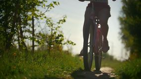Green tree branches, girls walking on bicycles, green tree, sunny summer day. Slow-motion stock video footage