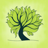Green tree with branches and leaves Royalty Free Stock Photo