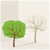 Green tree casting shadow of dry tree Royalty Free Stock Photo