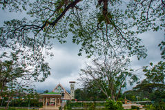 Green tree and the Catholic Church in a small town Valencia, island Negros. stock photography