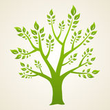 Green tree. Concept. Illustration for your design Royalty Free Stock Photos