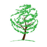 Green tree drawing isolated on white Royalty Free Stock Photos