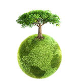 Green tree and Earth Stock Images