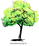 Green tree. Elegant  hand-drawn artistic illustration for design, textile and print. Royalty Free Stock Photos