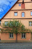 Green tree on the façade of house in Rothenburg Stock Photo