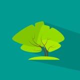 Green tree flat eco icon vector Stock Image