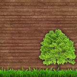 Green tree and fresh grass on a wooden background. Green tree and fresh grass on a wooden boards background. surround background Stock Image