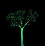 Green tree. Fresh green tree isolated on black background vector illustration