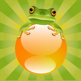 Green Tree Frog. Vector glossy green tree frog with bright orange throat Stock Photography