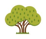 Green tree full of red apple garden summer organic season food fruits flat nature vector. Stock Photography
