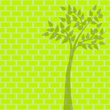 Green tree on green brick background Stock Photo