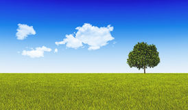 Green Tree on Green Land. Royalty Free Stock Photo