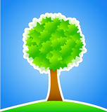 Green Tree on Green Meadow Stock Images