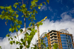 Green tree and growing building. Focus on building Royalty Free Stock Photography