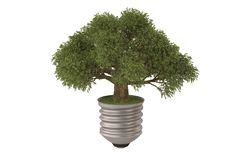 Green tree growing out of a bulb.3D illustration. Green tree growing out of a bulb. 3D illustration Royalty Free Stock Image