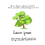 Green Tree Hand Draw Color Icon Vector Royalty Free Stock Images