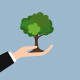 Green tree in hand flat style illustration Stock Images