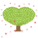 Green tree with heart shaped crown Royalty Free Stock Photo