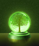 Green tree inside the crystal ball. Green tree seen inside the crystal scrying ball Stock Image