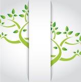 Green tree inside a pocket. illustration Royalty Free Stock Photography