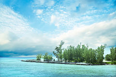 Green tree island in the middle of the ocean. With light blue water under the white cloudy sky Royalty Free Stock Photo