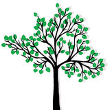 Green tree isolated over white background Royalty Free Stock Photo